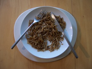 Lunch anyone? Mealworm beetle larvae can make a nutritious addition to any diet